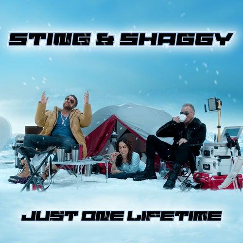 Just One Lifetime de Sting