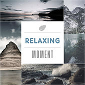Relaxing Moment – Nature Sounds for Relaxation, Spring Rain, Birds Sounds, Ocean Waves, Anti Stress Music de Nature Sounds Artists