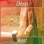 Deep Rest – Music for Meditation, Total Concentration, Yoga Healing, Stress Relief, Zen Meditation de Zen Meditation and Natural White Noise and New Age Deep Massage