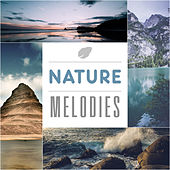Nature Melodies – Calm Music for Sleep, Healing Sounds, Gentle Rain, Soothing Ocean, Restful Time de Sounds Of Nature