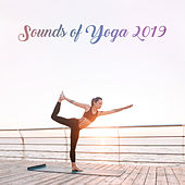 Sounds of Yoga 2019 – New Age Meditation & Relaxing Soft Music, Pure Harmony, Chakra Healing by Lullabies for Deep Meditation
