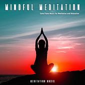 Mindful Meditation: Calm Piano Music For Meditation and Relaxation by Spa Music (1)