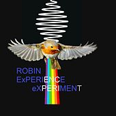 Robin Experience eXperiment de Robin
