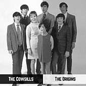 The Origins by The Cowsills