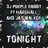 Tonight by DJ Purple Rabbit