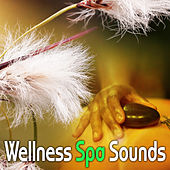 Wellness Spa Sounds – Relaxation Music for Massage, Soothing Piano, Healing Water, Oriental Melodies, Spa Music de Zen Meditation and Natural White Noise and New Age Deep Massage