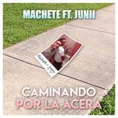 Caminando Por la Acera by Machete