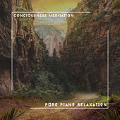 Conciousness Meditation - Pure Piano Relaxation von Relaxing Chill Out Music
