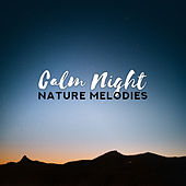 Calm Night Nature Melodies – New Age Soft Music for a Good Sleep & Full Relax After Word Day de Nature Sound Collection