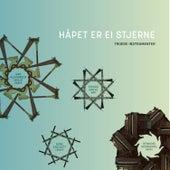 Håpet er ei stjerne - truede instrumenter by Henning Sommerro