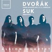 Meditation on an old Czech Hymn 'St Wenceslas', Op. 35a by Albion Quartet