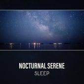 Nocturnal Serene: Sleep by Deep Sleep Music Society