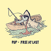 Free at Last by PUP