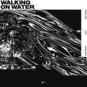 Walking On Water di Albin Myers