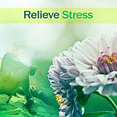 Relieve Stress – Pure Sounds of Nature, Relaxation Music, Massage, Healing Relaxation, Reduce Anxiety de Zen Meditation and Natural White Noise and New Age Deep Massage