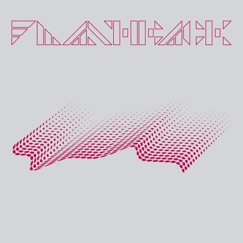 Flashback Single by Fujiya & Miyagi