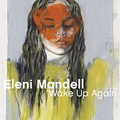 What's Your Handle (Radio Waves) by Eleni Mandell