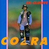 Exclusive de Mad Cobra