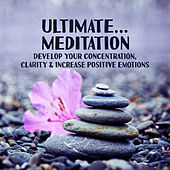 Ultimate… Meditation: Develop Your Concentration, Clarity & Increase Positive Emotions by Various Artists