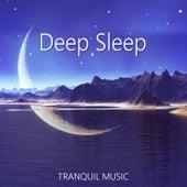 Deep Sleep: Tranquil Music – Calming Sounds for Evening, Melody of Nature for Relax and Better Dreams, Zen Lullabies by Deep Sleep Music Academy