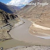 Relaxing People Vol 38 de Various Artists