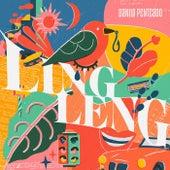 Ling Leng von Danilo Penteado