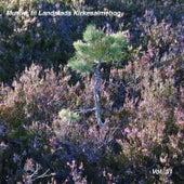 Musikk til Landstads Kirkesalmebog Vol. 51 by Johan Muren