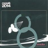 Mosaik 2014 (2019 Remastered Version) by Kreidler
