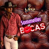 Sommelier de Bocas de Léo Goiano