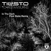 In the Dark (First State Remix) de Tiësto
