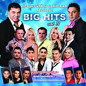 Big Hits, Vol. 3 by Various Artists