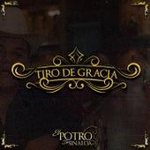 Tiro De Gracia by El Potro De Sinaloa