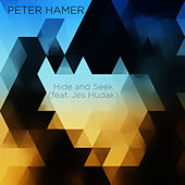 Hide and Seek by Peter Hamer