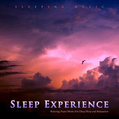 Sleep Experience: Relaxing Piano Music For Deep Sleep and Relaxation by Pianomusic