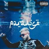 Paradise von Hamza