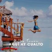 Aqui Ay Cualto (Blucho Music, Tony Magik Urban disco rmx) de Hilton Tercero