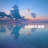Good Night Sleep by Various Artists