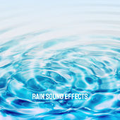 Rain Sound Effects by Various Artists