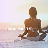 Meditate and Relax by Various Artists