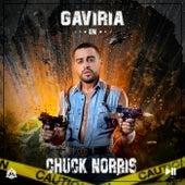 Chuck Norris de Gaviria