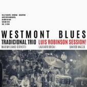 Luis Robinson Session de Westmont Blues