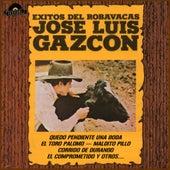 Éxitos del Robavacas by José Luis Gazcón