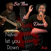 Never Let You Down (feat. Dinah) by Sir Tlou