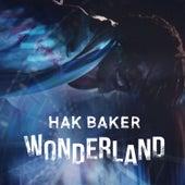 Wonderland by Hak Baker