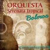 Boleros: Cuando Vuelva a Tu Lado von Orquesta Serenata Tropical