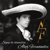 Sigue la Dinastía by Alex Fernández
