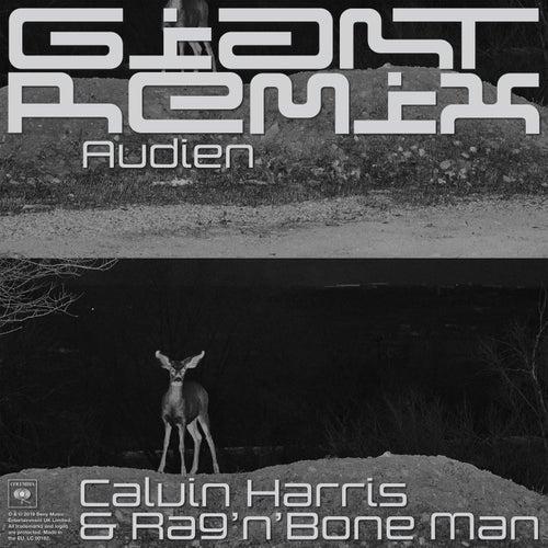 Giant (Audien Remix) by Calvin Harris