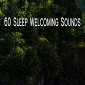 60 Sleep Welcoming Sounds de Sounds Of Nature