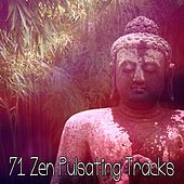 71 Zen Pulsating Tracks by Yoga Workout Music (1)