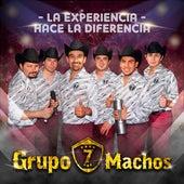 La Experiencia Hace la Diferencia de Grupo 7 Machos